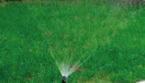 prskalice-za-travu