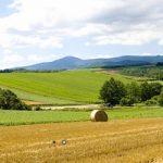 Oko 500 prijava stiglo za Inteza Farmer konkurs