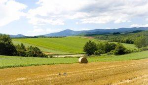 inteza-farmer-konkurs