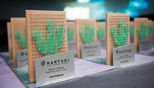kaktus-2016