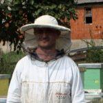 ПЧЕЛАРСТВО МОЖЕ БИТИ УНОСАН ПОСАО У СРБИЈИ: Неопходни погони за прераду меда