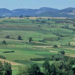 НЕЗНАЊЕ И БЕСПАРИЦА: Осигурано свега 10 одсто пољопривредних површина