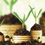 МОЖЕ ЛИ НОВАЦ НЕДЕПОЗИТНИХ ОРГАНИЗАЦИЈА ДА УБРЗА РАЗВОЈ МАЛИХ И СРЕДЊИХ ПРЕДУЗЕЋА: Предузетницима потребни нови извори финансирања