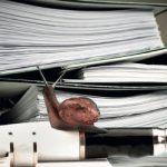 ЈЕЛЕНА БОЈОВИЋ: За 10 година укинуто око 100 бирократских процедура