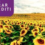 Komercijalna banka najuspešnija u isplati subvecionisanih agro kredita