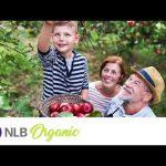 Završen NLB Organik konkurs – Milion i po dinara proizvođačima organske hrane